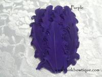 Nagorie curly feather Hackle pads Purple